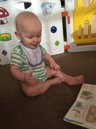 Bald 8 month old baby in white vest with green crocodiles all over it and a grey bib with blue stars, sitting on a beige carpet in front of a plastic gate with pictures on it. He is looking at an open book.