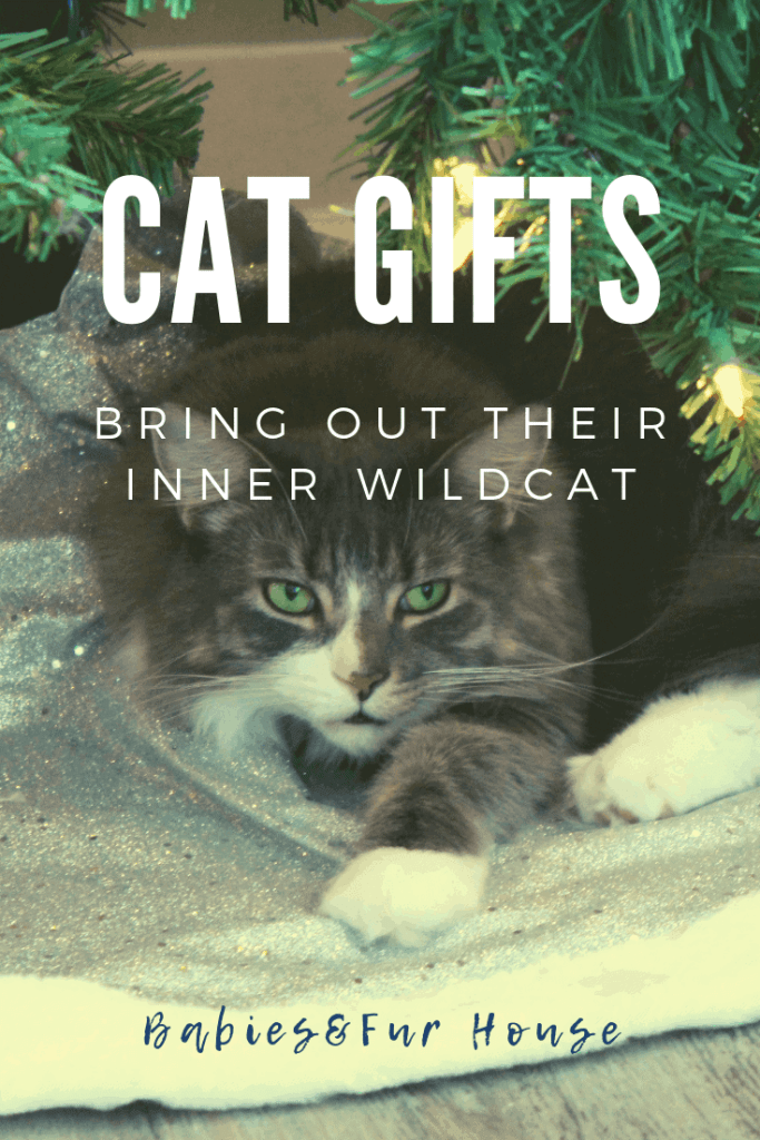 Gifts For Cats: Toys For Their Inner Kitten