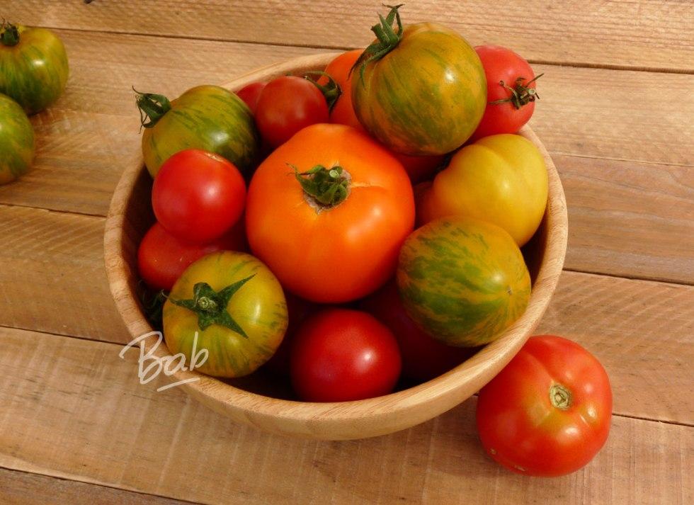 tomates-mi-septembre