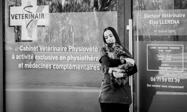 cabinet-veterinaire-physioveto-elsa-llerena-babouchkatelier- (67)