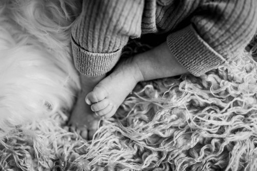 Babylove - Mini-chaton d'amour