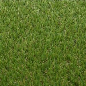 Kunstgras RAPLA - Rol van 10m² (2x5m) van polyethyleen - Dikte 20 mm