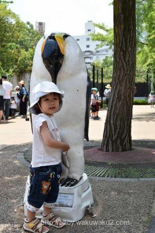 こゆたん 2歳9ヶ月 動物園 2歳児