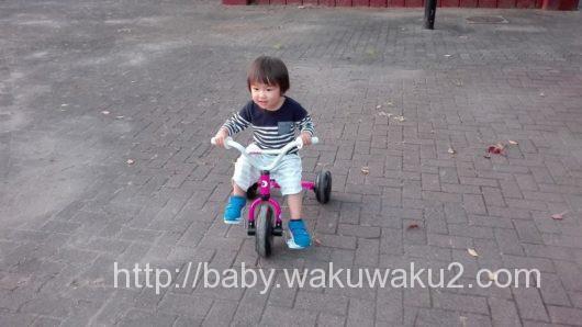 3歳 三輪車 アイデス こゆたん 乗れた