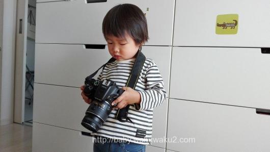 こゆたん カメラ 3歳