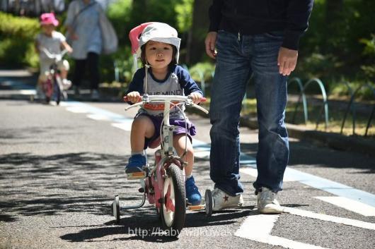 北鹿浜公園 動物公園 3歳 幼児 乗り物 無料