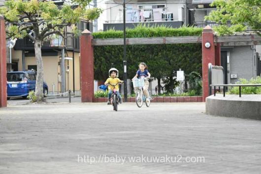 自転車練習 ディーバイクAL アイデス 乗れる