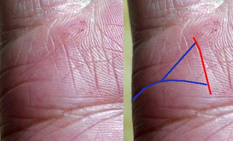 Линии отношений на руке с фото