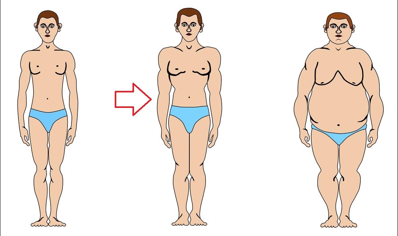 endomorf nu poate pierde în greutate