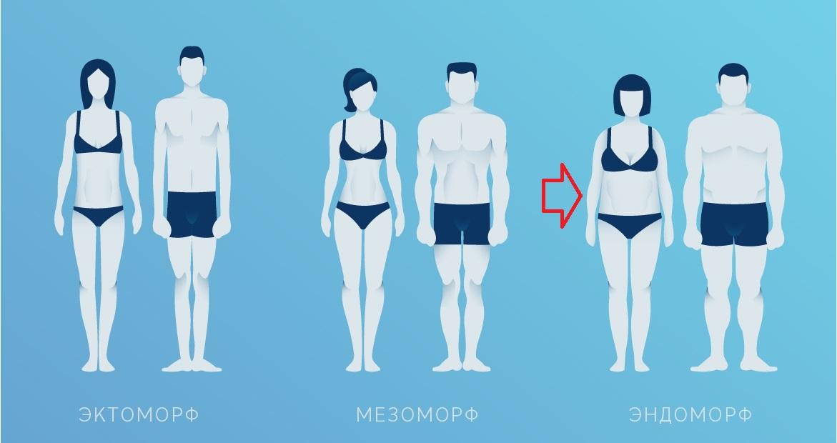 Dieta feminină mezomorfă - Sănătate -