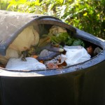 Composting diapers on BabyBirdsFarm.com