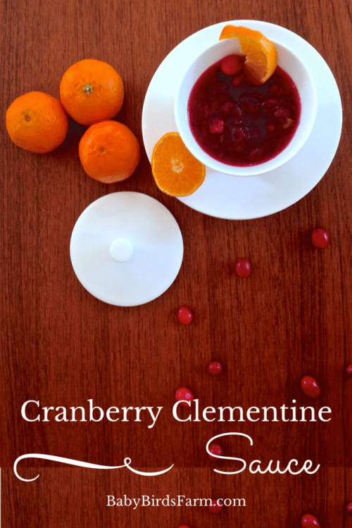 easy cranberry clementine sauce recipe