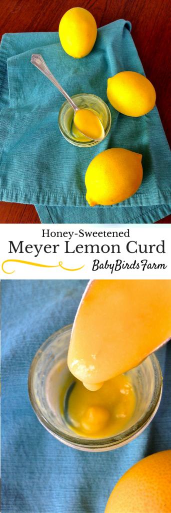 Honey-Sweetened Meyer Lemon Curd from @BabyBirdsFarm