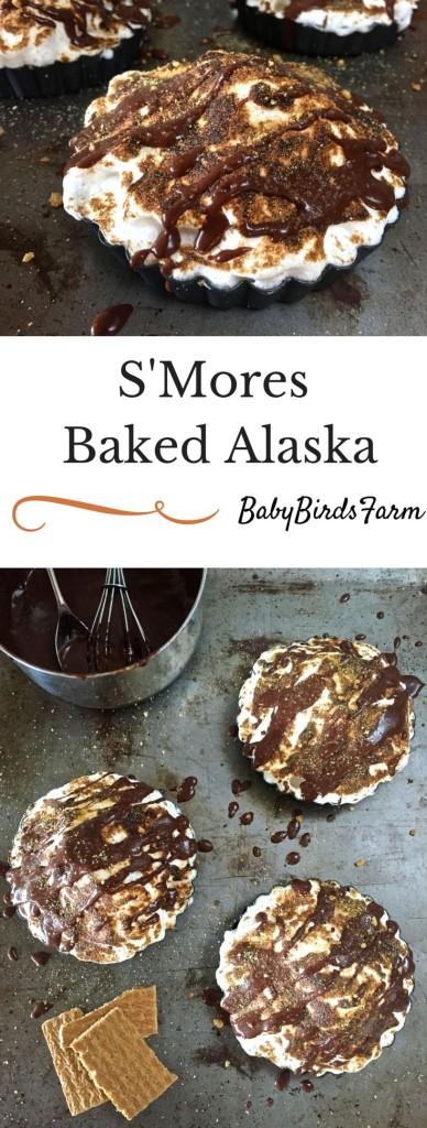 S'mores Baked Alaska
