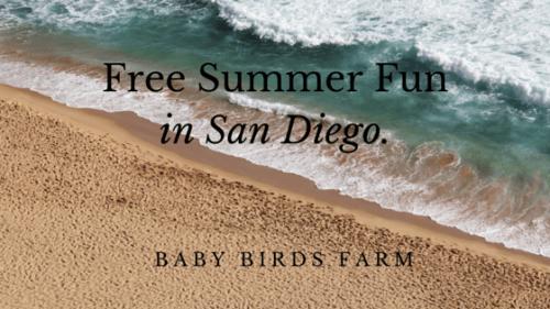 Free Summer Fun in San Diego.