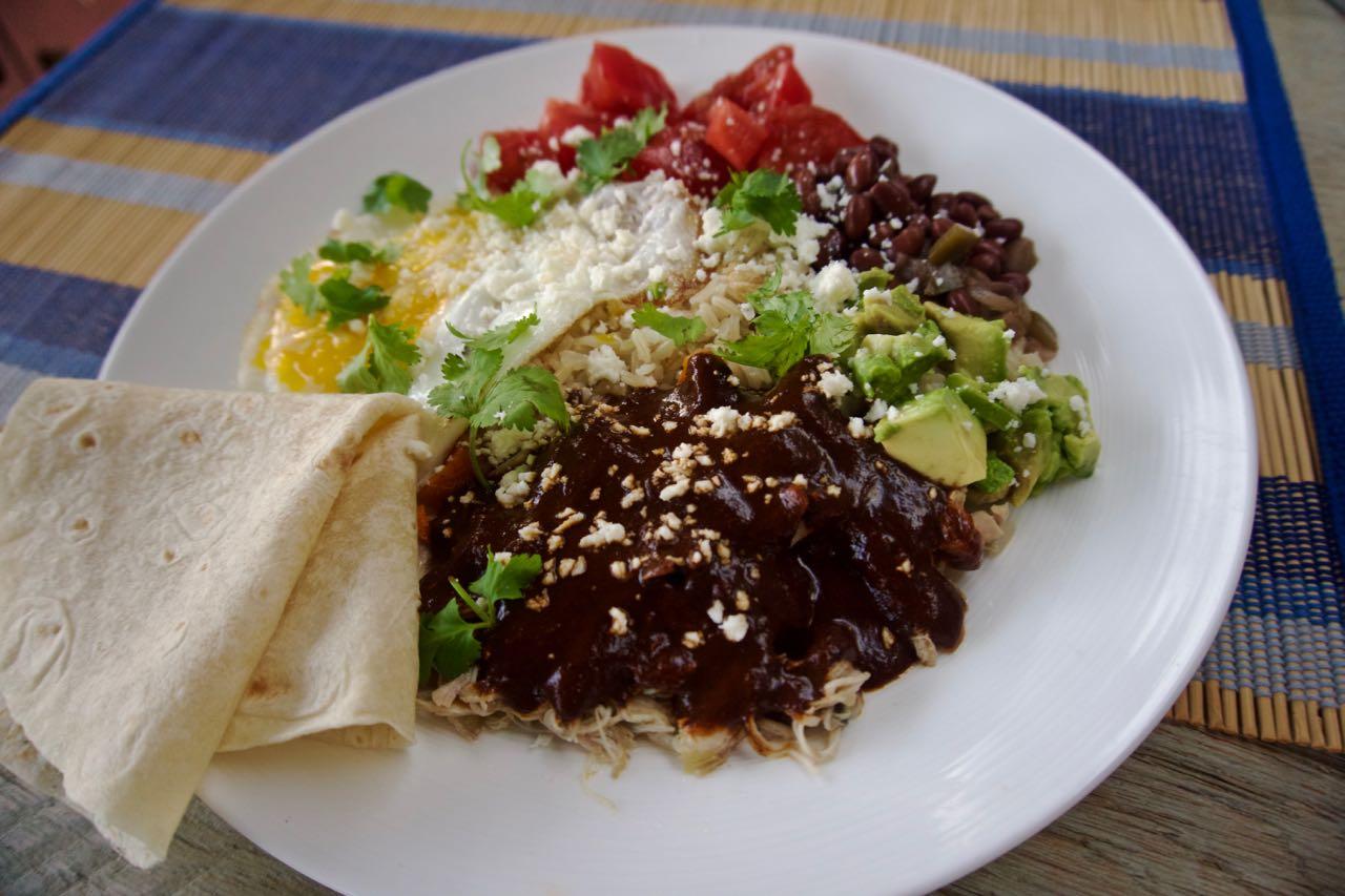 Easy Mole And Shredded Chicken Recipe
