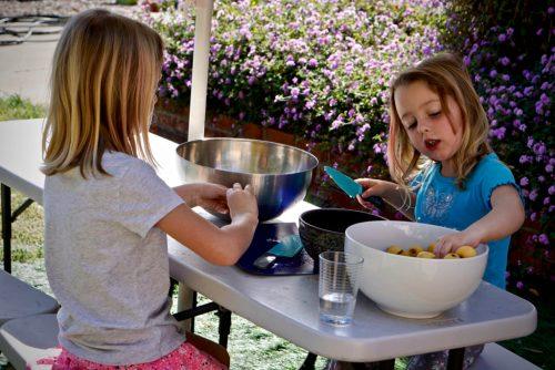 Kids Cooking Recipe: Fresh Fruit (Loquat) Sorbet