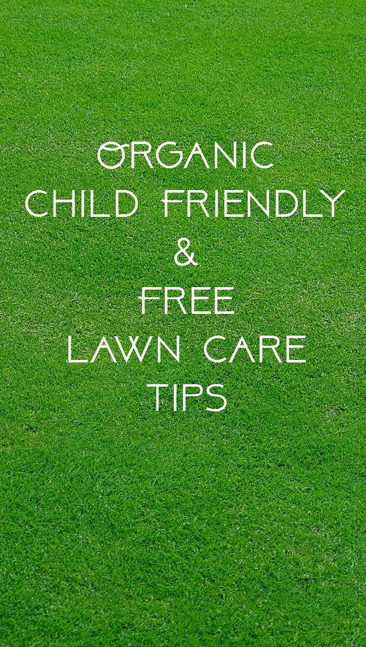 Free lawn care tips - Winter lawn care advice ...