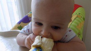 Starting Solids: Baby Led Weaning