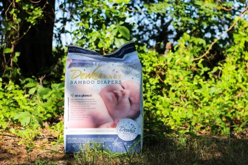 This is a review about Dewor bamboo diapers for babies. They are eco-friendly and a great alternative to typical disposable diapers.