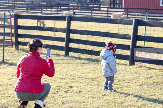 HP Sproket Review by popular DC mommy blogger Baby Castan on Board