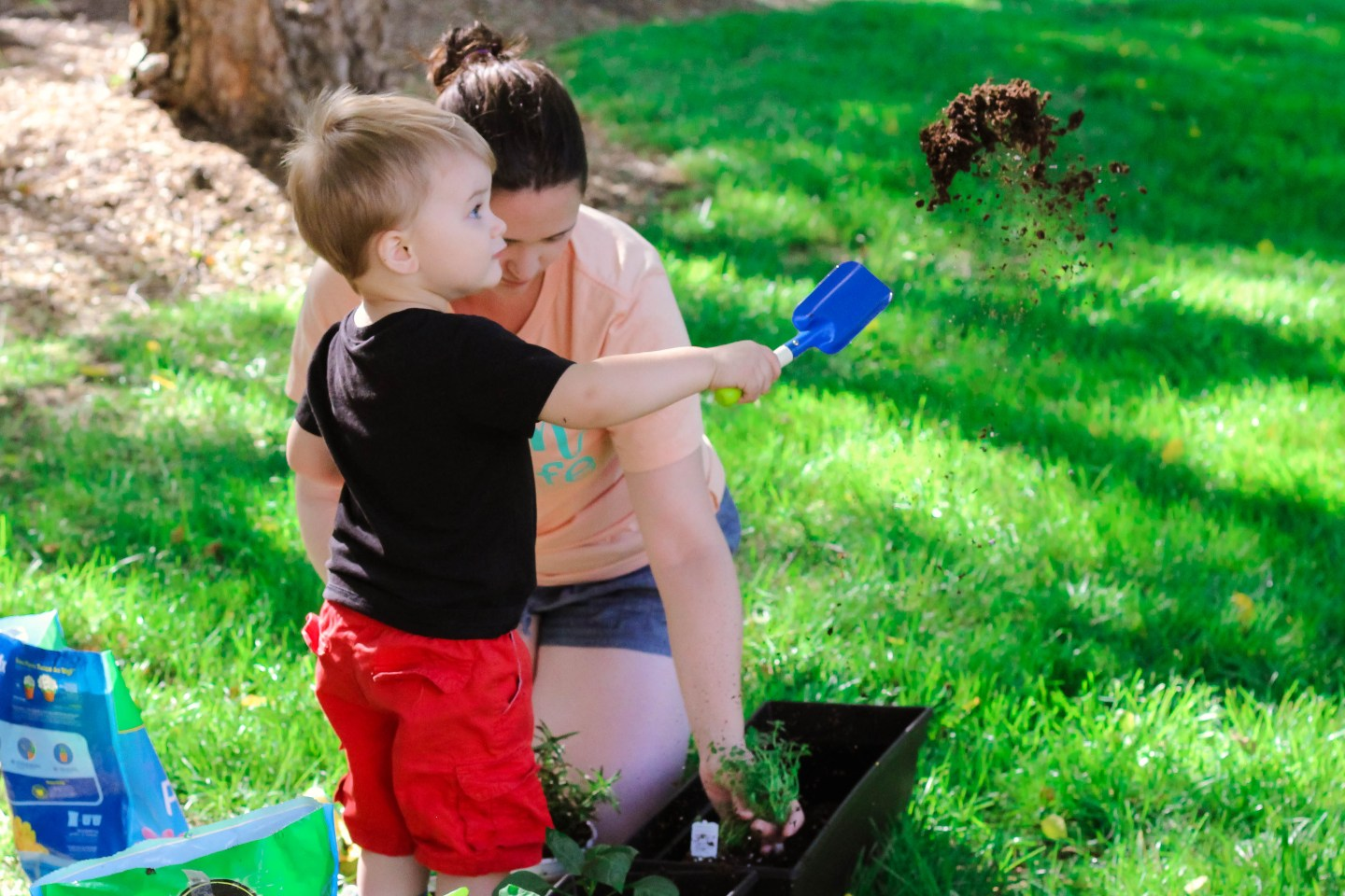 Planting with toddlers featured by top US mommy blog Baby Castan on Board