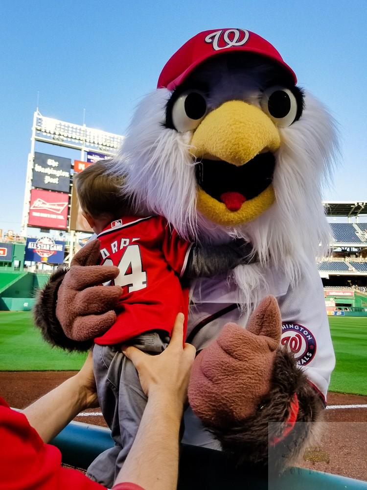 washington nationals baseball team_toddler with screech national's mascot