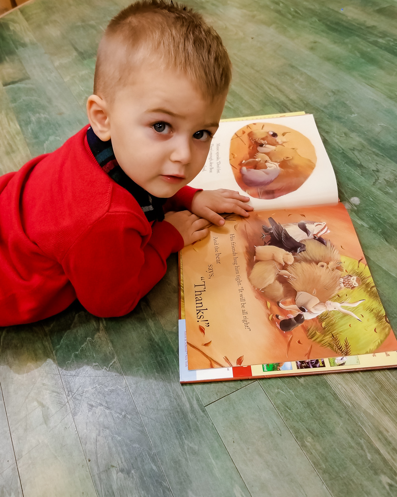 Teaching Thankfulness: Top 5 Thanksgiving Books for Toddlers