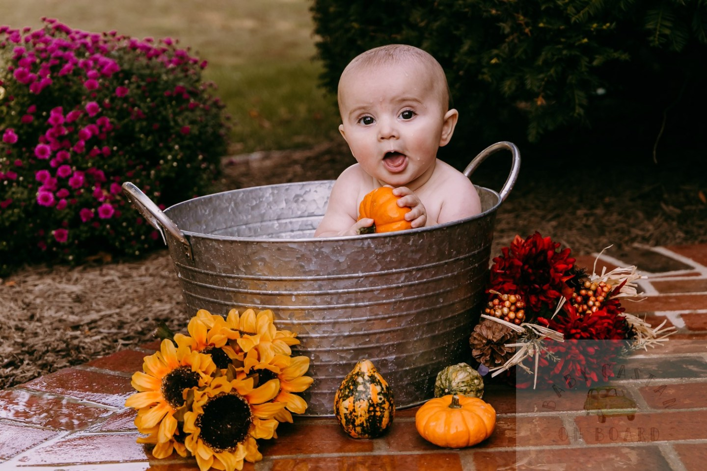 How to Create a Fun Pumpkin Milk Bath Fall Baby Photo Shoot