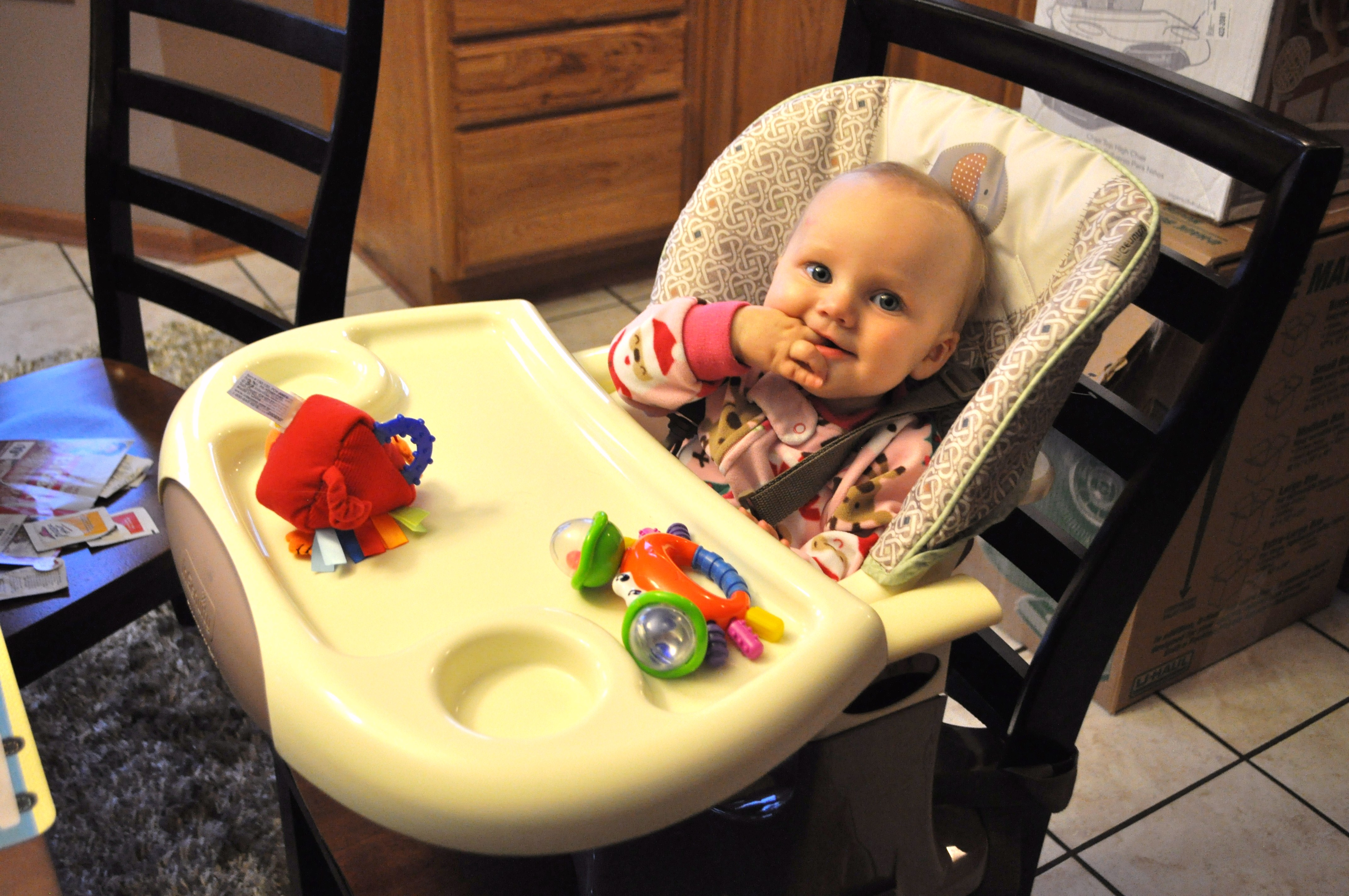 ingenuity high chair canada reviews folding edmonton top review