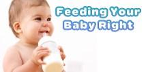 best-organic-baby-formula