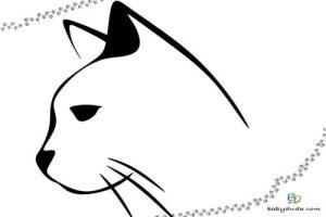 Malvorlagen Katzenkopf   Batavusprorace