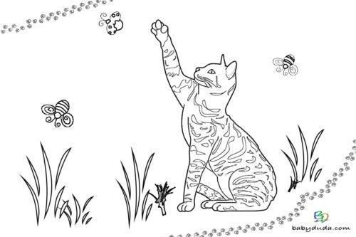 Malvorlage Katze Liegend - tiffanylovesbooks
