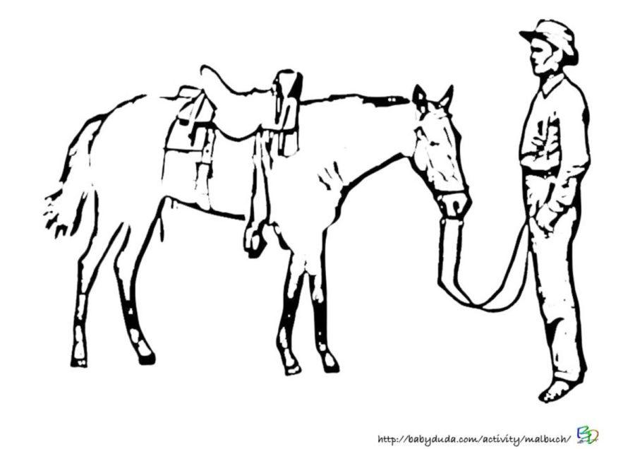 Pferdebilder Ausmalen Pferdekpfe Ausmalbilder