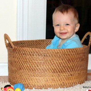 Wordless Wednesday: Babe in a basket edition