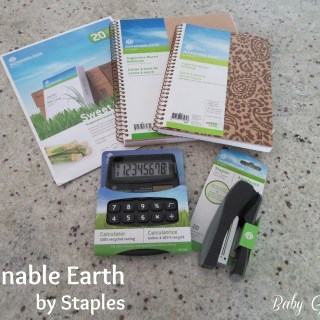 Sustainable Earth Office Supplies by Staples