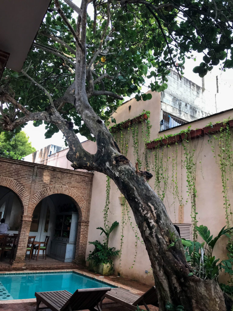 outdoor courtyard with pool and tree at Casa Antillana
