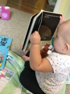 little owl's night book review: Marian reads Little Owl's Night