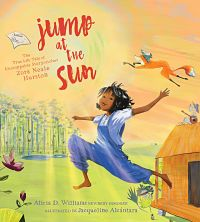 Book cover of Jump at the Sun