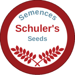 Semence Schuler's