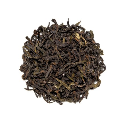 Narcissus Oolong