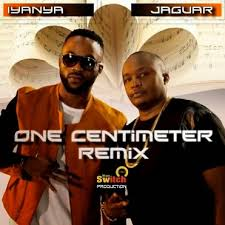AUDIO+VIDEO: Jaguar Ft. Iyanya – One Centimeter (Remix) | DOWNLOAD