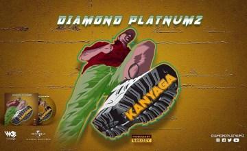 Diamond Platnumz Kanyaga