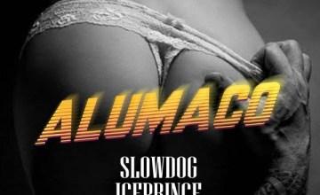 Slowdog Alumaco