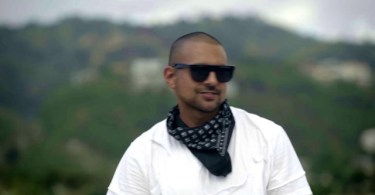 sean paul hold on to the dream