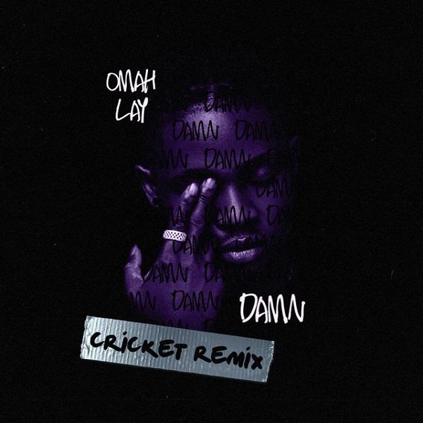 Omah Lay Damn Cricket Remix
