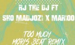 RJ The DJ Too Much Remix
