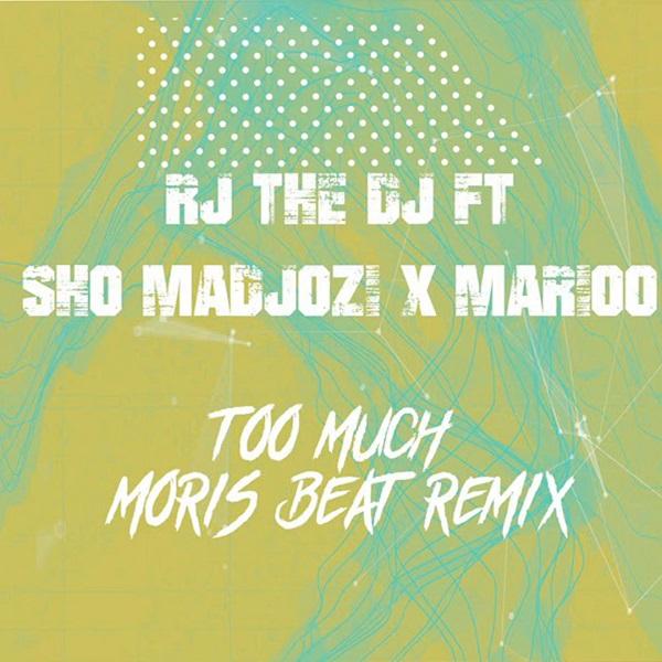 RJ The DJ Too Much Remix