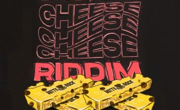 Various Artists Swiss Cheese Riddim album