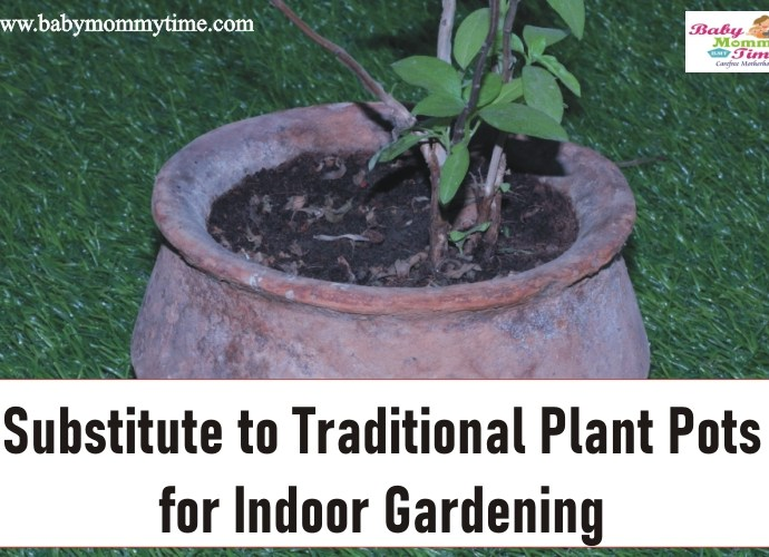 Substitute for Traditional Plant Pots for Indoor Gardening